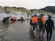 Die Helfer konnten mit Hilfe von Pontons sechs Wale 400 Meter weit ins offene Meer bringen. (Bild: Keystone/AP)