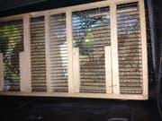 Die geschmuggelten Wellensittiche befanden sich in Transportboxen und waren gut versorgt. (Bild: Hauptzollamt Singen)