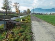Hell- über Dunkelgrau bis Grün: Fünf unterschiedliche Beläge werden am Kanal zwischen Kriessern und Rebstein getestet. (Bild: Kurt Latzer)