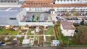 Blick auf das Firmenareal der DGS in St.Gallen-Winkeln: Wo heute noch Autos parkieren, werden künftig Bauteile für Elektrofahrzeuge gegossen. Für die Familiengärten im Vordergrund ist dann kein Platz mehr. (Bild: Urs Bucher)