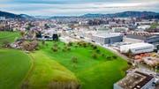 Diese Wiese im Osten der Stadt wird demnächst überbaut: Als erste Firma plant die Regloplas AG einen Neubau für eine Produktionsstätte. (Bild: Urs Bucher)