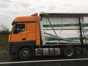 Rund 24 Tonnen Schnittholz drückten bei einem Bremsmanöver auf die Fahrerkabine. (Bild: Zuger Polizei)