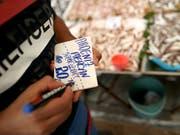Ein Verkäufer in Istanbul beschriftet die Preisangaben seiner Waren neu - die Teuerung in der Türkei hat sich erneut beschleunigt. (Bild: KEYSTONE/EPA/ERDEM SAHIN)