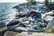 Ein Helfer greift sich Abfälle zwischen den Steinen. (Bilder: Andrea Stalder)