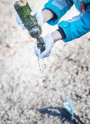 Eine Plastikflasche voller Steine und Algen.