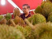 Durian-Früchte sind in Südostasien beliebt, ihr süsslich-fauler Geruch ist aber sehr gewähnungsbedürftig. (Bild: KEYSTONE/EPA/STEPHEN MORRISON)