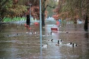Der Parco della Pace in Locarno ist plötzlich zu einem grossen Teich geworden. (Bild: Alessandro Crinari/Keystone (Locarno, 6. November 2018))