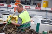Roger Gehrig von der Gehrig Gärtnerei hebt die Grube für die Hopfenbuche aus. (Bilder: Sara Petrillo)