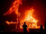 Die ganze Stadt soll evakuiert werden: Flammeninferno im 27'000-Einwohner-Ort Paradise im Norden Kaliforniens. (Bild: KEYSTONE/FR34727 AP/NOAH BERGER)