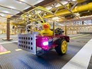 Mini-Taxi mit gelber Gummifracht: In der von Badeenten bevölkerten Modellstadt «Duckietown» geht es darum, künstliche Intelligenz für autonome Fahrzeuge zu testen. (Bild: Alessandro Della Bella / ETH Zürich)