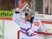 Wechselt auf nächste Saison von den Lions zu den Berner Bären: Goalie Niklas Schlegel (Bild: KEYSTONE/MARCEL BIERI)
