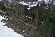 In der Gemeinde Wildhaus-Alt St.Johann richtete der Sturm Burglind grosse Schäden an, beispielsweise oberhalb von Alt St.Johann (Bild links) oder entlang des Wanderwegs von Wildhaus nach Gamplüt (Bild rechts). (Bild: Bilder: Sabine Camedda)