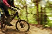 Das Befahren von Wanderwegen mit dem Mountainbike ist in Innerrhoden verboten. (Bild: Hannes Thalmann)