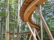 Mit Holz in den Wald gebaut. (Bild: Hanspeter Schiess)