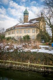 Verwahrlost, verwaist und verlottert: Die Luxburg in Egnach. (Bild: Reto Martin)