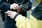 Die Stadtpolizei kontrollierte mehrere Personen, die Drogen bei sich getragen haben. (Bild: PD)