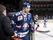Abgang bei den ZSC Lions: Drew Shore verlässt Zürich in Richtung China und die KHL (Bild: KEYSTONE/ENNIO LEANZA)