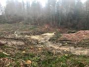 Die Bäume sind gefällt, das zu sanierende Deponiegelände freigestellt. Die Raupen des Baggers haben sichtbare Rillen ins durchnässte Erdreich gezeichnet, während die Schaufel zutage gefördert hat, was hier über Jahrzehnte entsorgt worden ist: Müll.