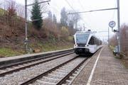 Ausflügler an den Gübsensee können ab Sonntag nicht mehr die S-Bahn nehmen. Die Züge halten dort während mindestens zwei Jahren nicht mehr. (Bild: Thomas Hary/5. Dezember 2018)