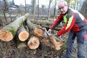 Revierförster Bruno Cozzio zeigt einige der geschädigten Baumstämme.