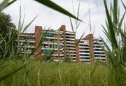Alpenblick Cham: Blick auf die Hochhäuser 8,10 und 12. (Bild: Stefan Kaiser (Cham, 7. August 2018))