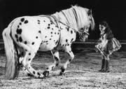 Schon als Mädchen wagte sich Géraldine Knie in die Zirkus-Manege. (Bild: Keystone)