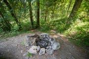 Derzeit verboten: Grillieren im Wald beim Stanserhorn. (Bild: Keystone / Urs Flüeler)