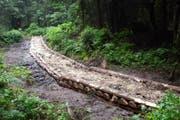 So sieht der neue Weg am Höchberg im Eigenthal aus. (Bild: Pro Pilatus / Alois Häcki)