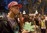 Jetzt ist in Uruguay auch der Verkauf von Marihuana legal, wie es Demonstranten neulich forderten. (Bild: Miguel Rojo/AFP (Montevideo, 5. Mai 2017))