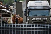 Im Sommer machte der «Fall Hefenhofen» Schlagzeilen. (Bild: Manuel Nagel (Hefenhofen, 8. August 2017))
