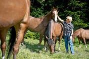 Wichtiges finanzielles Standbein für den landwirtschaftlichen Betrieb: die Pferdepension. (Bild Maria Schmid)