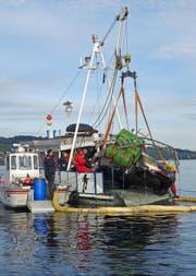 Am Auto sind Fässer befestigt. Das Fahrzeug war aufwändig mit dem ebenfalls geborgenen Boot verbunden. (Bild: Luzerner Polizei)