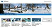 Bisher sind auf der Webseite Informationen auf Deutsch und Englisch verfügbar. (Bild: Screenshot zug.ch)