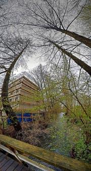 Hier vor dem City-Park soll die Sure (im Bild durch Äste verdeckt) um zwei Meter verlegt werden. Auch Bäume sollen weichen.