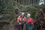 Die Landwirte Guido (39) und Jakob Oehen (75) in ihrem Wald. (Bild: Pius Amrein (Hohenrain, 8. Januar 2018))