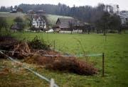 Über ein Grundstück des Grossacherhofs führt dereinst die Tangente. (Bild Stefan Kaiser)