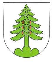 Das Original: Das Walchwiler Wappen zeigt eine sattgrüne Tanne, die auf einem Dreiberg steht und sechs rote Tannzapfen trägt. Der Hintergrund ist in Weiss gehalten. (Bild: Grafik: Angelo Gwerder)