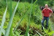 «Der Bauer bewegt sich weg vom Produzenten hin zum Landschaftspfleger.» Jakob Lütolf, Präsident der Luzerner Bauern. (Bild: Eveline Beerkicherv / Neue LZ)