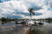 Zerstörung nach dem Hurrikan Irma in Florida. Der Sturm kostet Versicherer bis zu 50 Milliarden Dollar. (Bild: Nicole Raucheisen/AP (Bonita Springs, 13. September 2017))