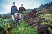 Claudia Meierhans und Markus Schwegler Meierhans mit Sohn Mael in ihrem Gemüsegarten. (Bild: Boris Bürgisser (Richenthal, 10. November 2017))