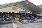 Säulirennen in der Arena. (Bild: Claude Hagen / Luzernerzeitung.ch)