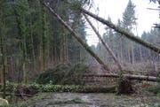 Im Rainmatterwald versperrt das Sturmholz die Strasse. (Bild: PD)