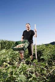 Die Kartoffelernte 2013 wird gut, sagt Landwirt Meinrad Pfister aus Altishofen, hier auf einem seiner Felder bei einer Probe. (Bild Manuela Jans)
