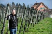 Toni Ottiger vom Weingut Rosenau möchte ein neues Betriebsgebäude bauen. Nun Macht ihm ein Gerichtsurteil einen Strich durch die Rechnung.