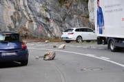 Felsbrocken liegen auf der Kehrsitenstrasse. (Bild: Matthias Piazza / Neue Nidwaldner Zeitung)