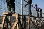 Arbeiter bringen am Grenzzaun zwischen Bulgarien und der Türkei Stacheldraht an. Der Zaun soll bis Ende Jahr 160 Kilometer lang sein. (Bild: AFP/Dimitar Dilkoff)