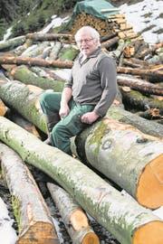 Franz Röösli mit Holz, das dereinst zu Kohle wird. (Bild: Eveline Beerkircher (Romoos, 23. Januar 2018))