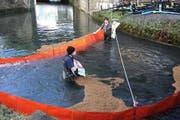 Einsatzkräfte streuen Ölbinder in den Bach. (Bild: Feuerwehr Ingenbohl - Brunnen)
