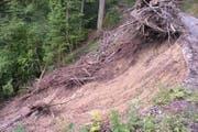 Eine Waldstrasse rutschte teilweise in die Tiefe. (Bild: PD)