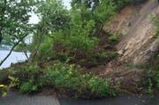 Der Erdrutsch verschüttete einen Teil der Seestrasse in Horw. (Bild: pd)